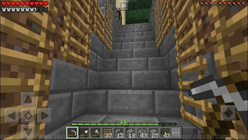 Minecraft40303_03