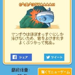 【funny game】這樣也可以死!?因為太難養而一炮而紅的飼育手遊。我的魚明天可以活下去嗎?