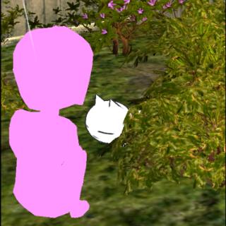 【funny game】以貓的觀點來進行的和主人之間各種溫馨故事,《美緒家的小貓》會讓你感動!