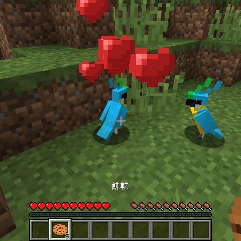 Minecraft流言終結測試:鸚鵡到底可不可以吃餅乾?